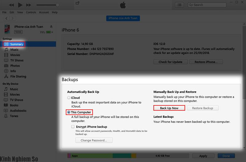 Mẹo hướng dẫn cách tải và cài đặt iOS 12 nhanh hơn server Apple ảnh 2
