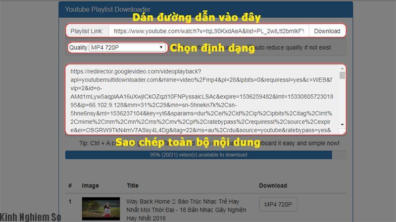 Thủ thuật tải video Youtube Playlist hàng loạt cực kì đơn giản ảnh 2