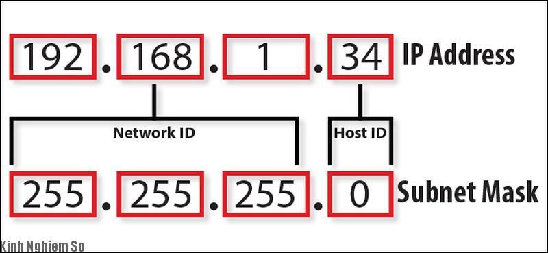Địa chỉ ip cấu thành từ 2 phần