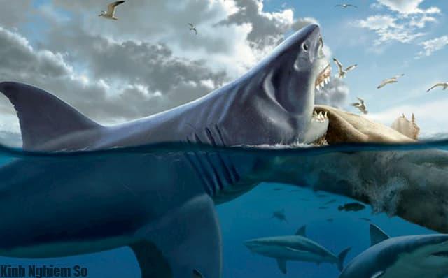 Cá mập khổng lồ