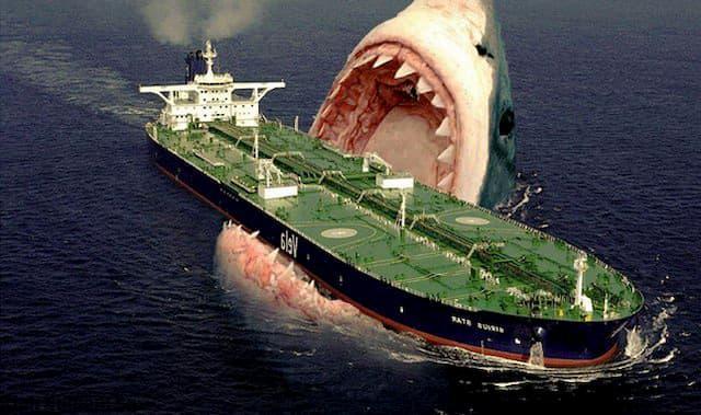 cá mập megalodon còn sống