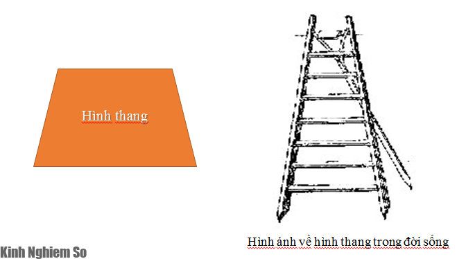 Cách tính diện tích Hình Thang