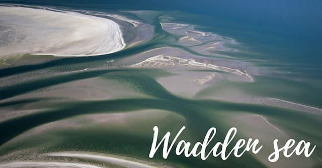 Biển Wadden là gì